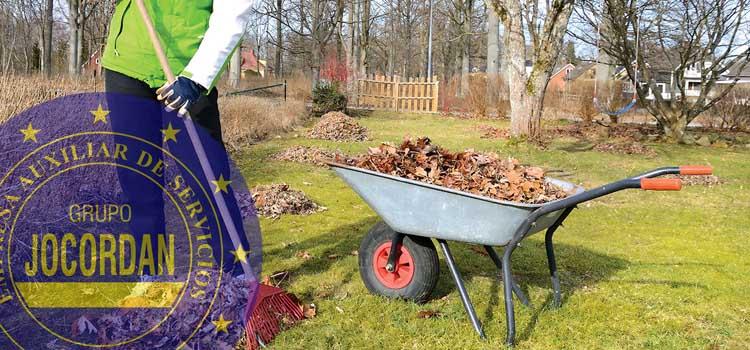 consejos de limpieza de jardines